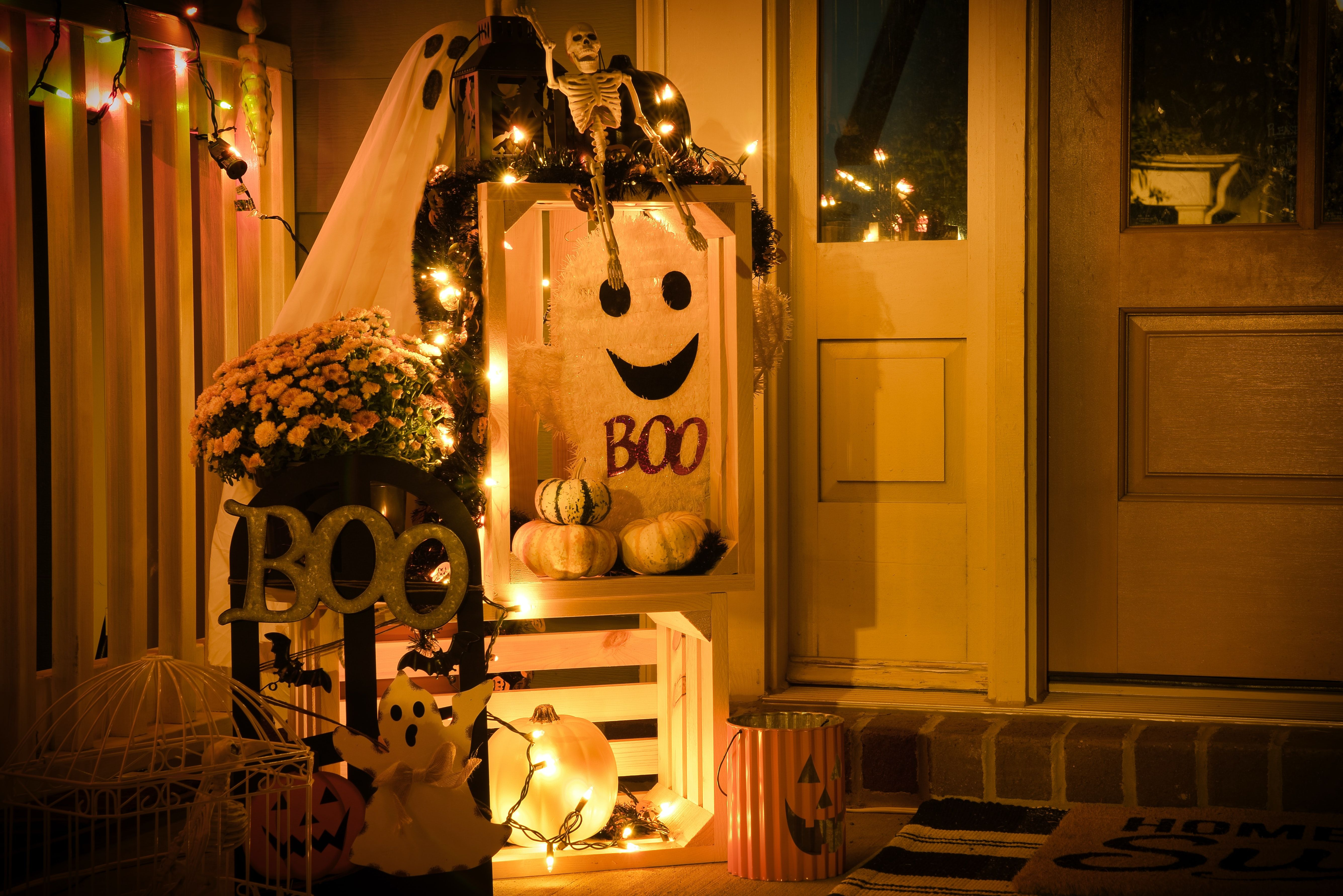 Breda Halloween.How To Keep Your Halloween Decorations Pest Free Breda Pest Management
