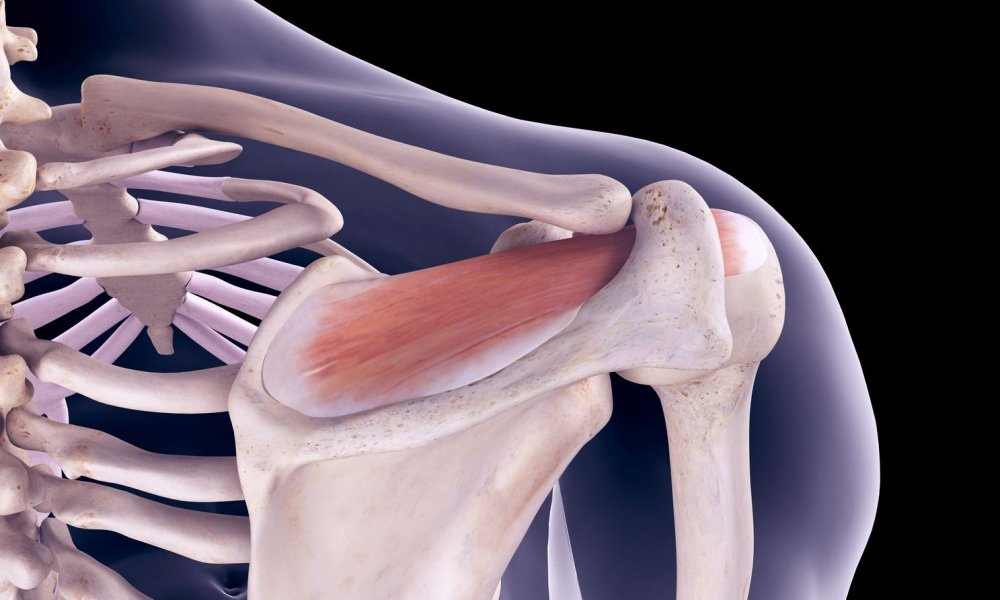 Rotator Cuff Exercises: Stretches