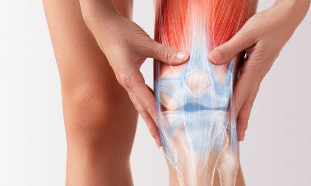 Knee Arthroscopy/Meniscectomy: The Process