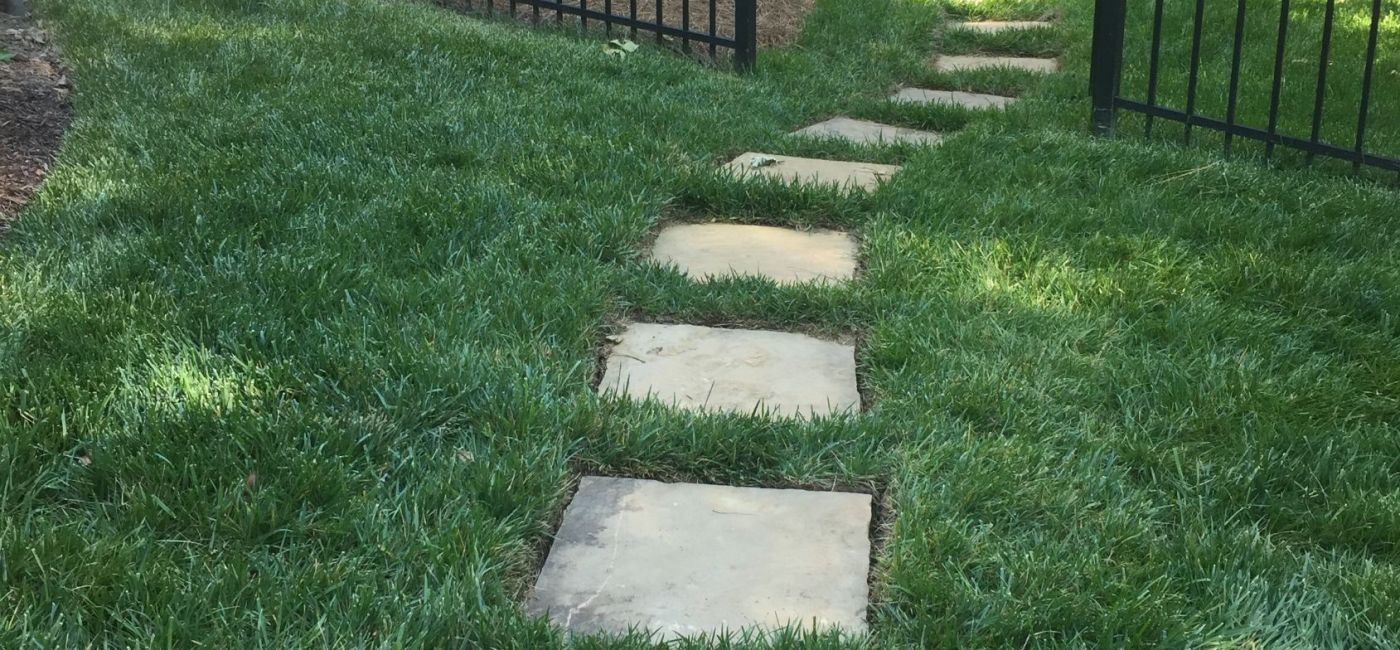 steps in new sod