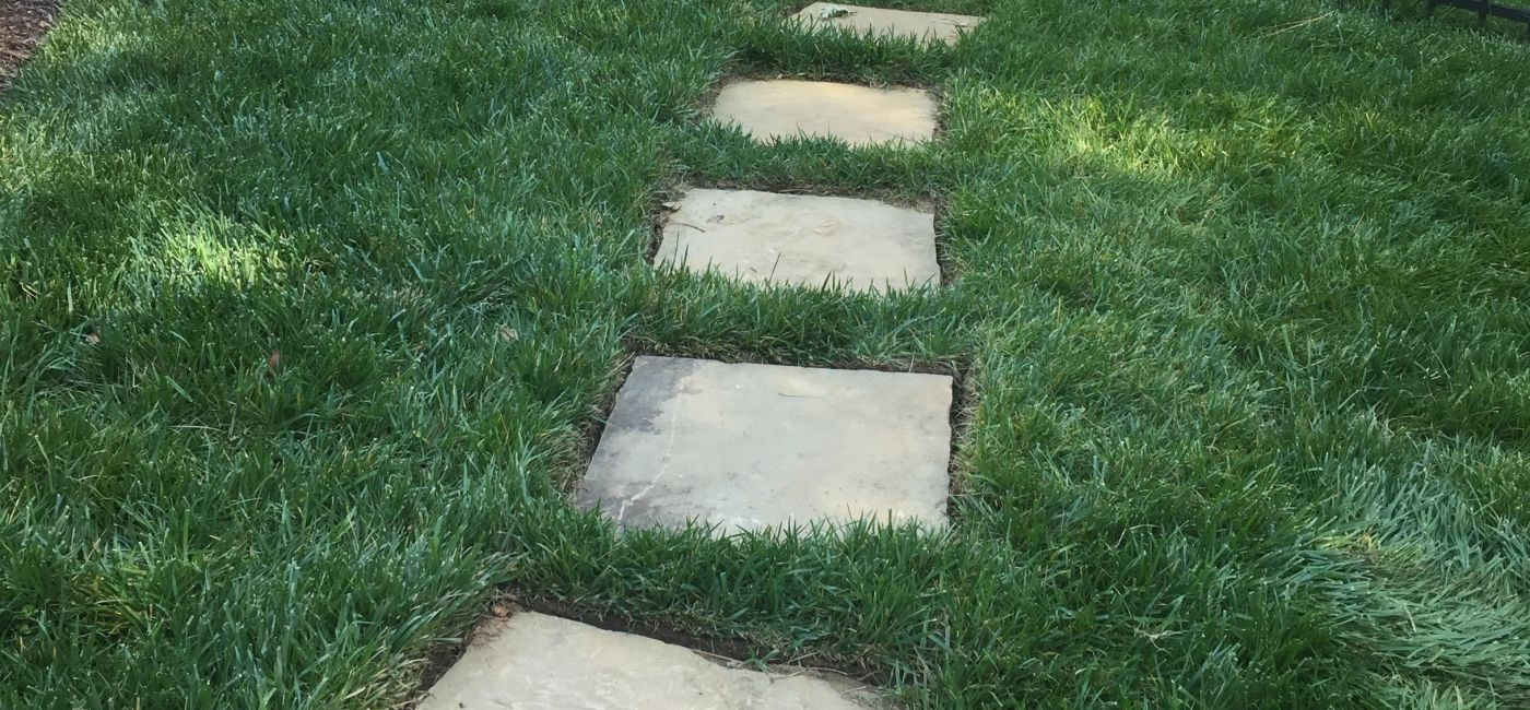 Dimensional step treads in sod