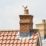 5 Potential Reasons for a Leaking Chimney image