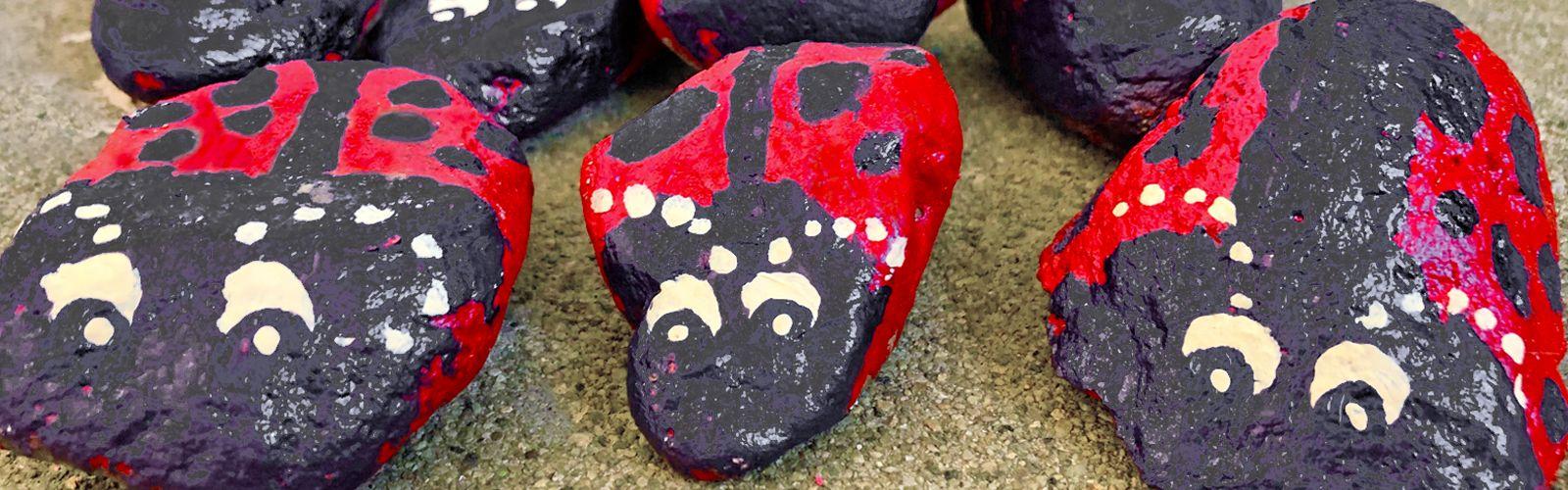 a close up of ladybug rocks