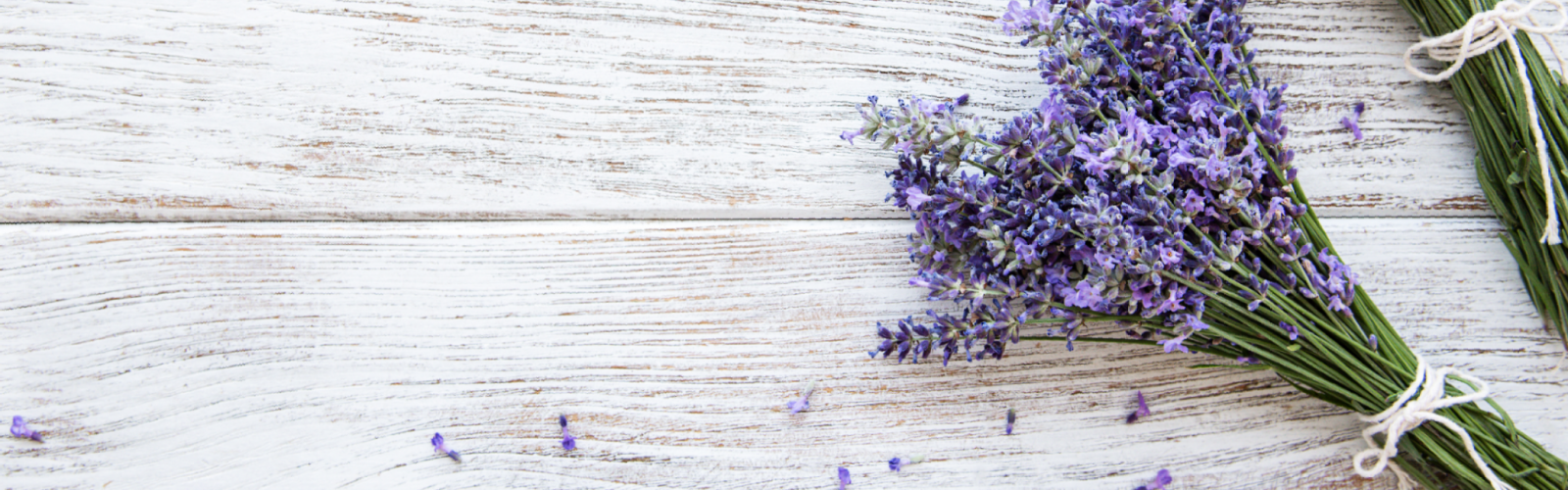 Fresh lavender flowers on wood background