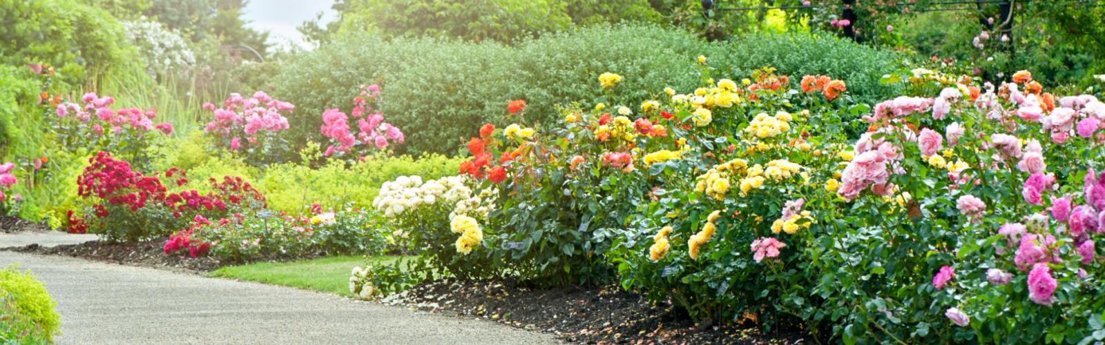landscape garden guides