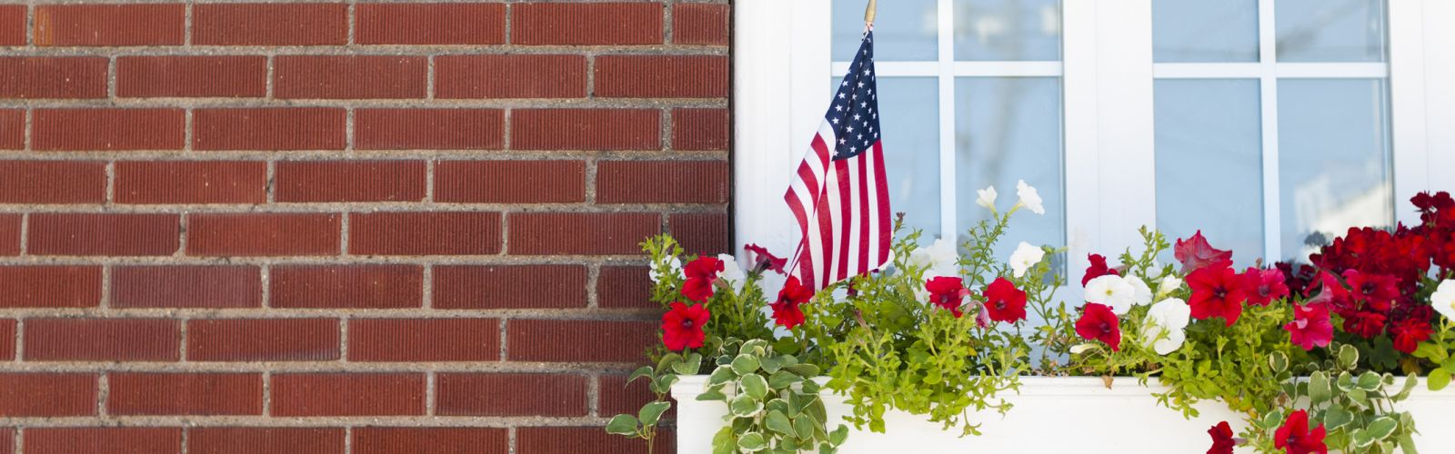red and white flowers in window box on a brick building