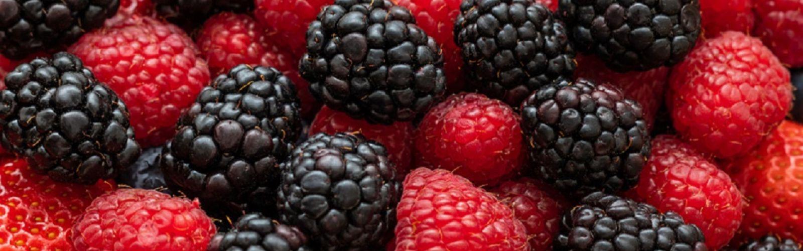 raspberries and blackberries