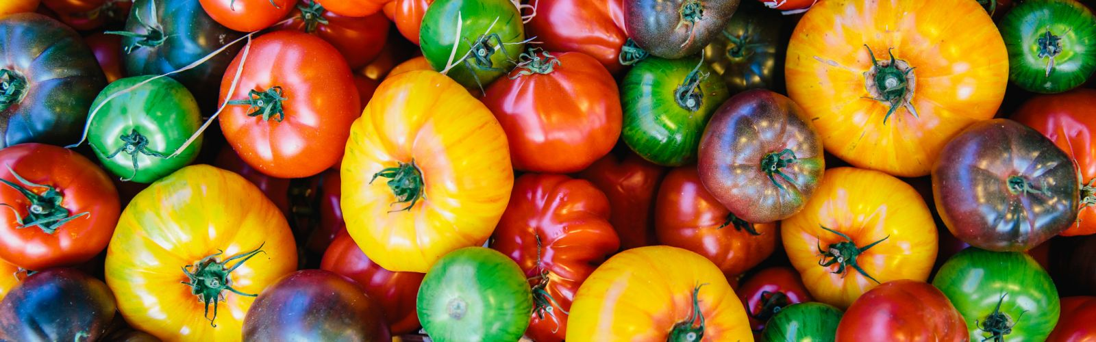 an overhead view of a bunch of different colored tomatos