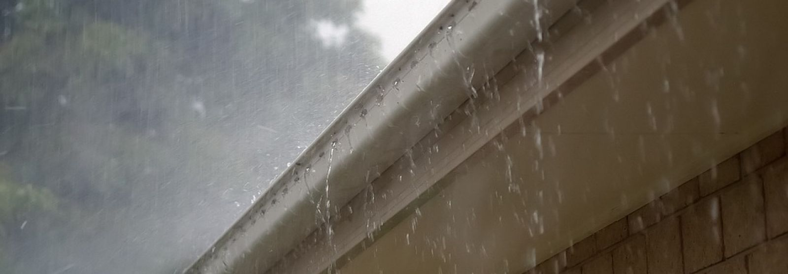 How to Prevent Water Damage to your Home's Exterior