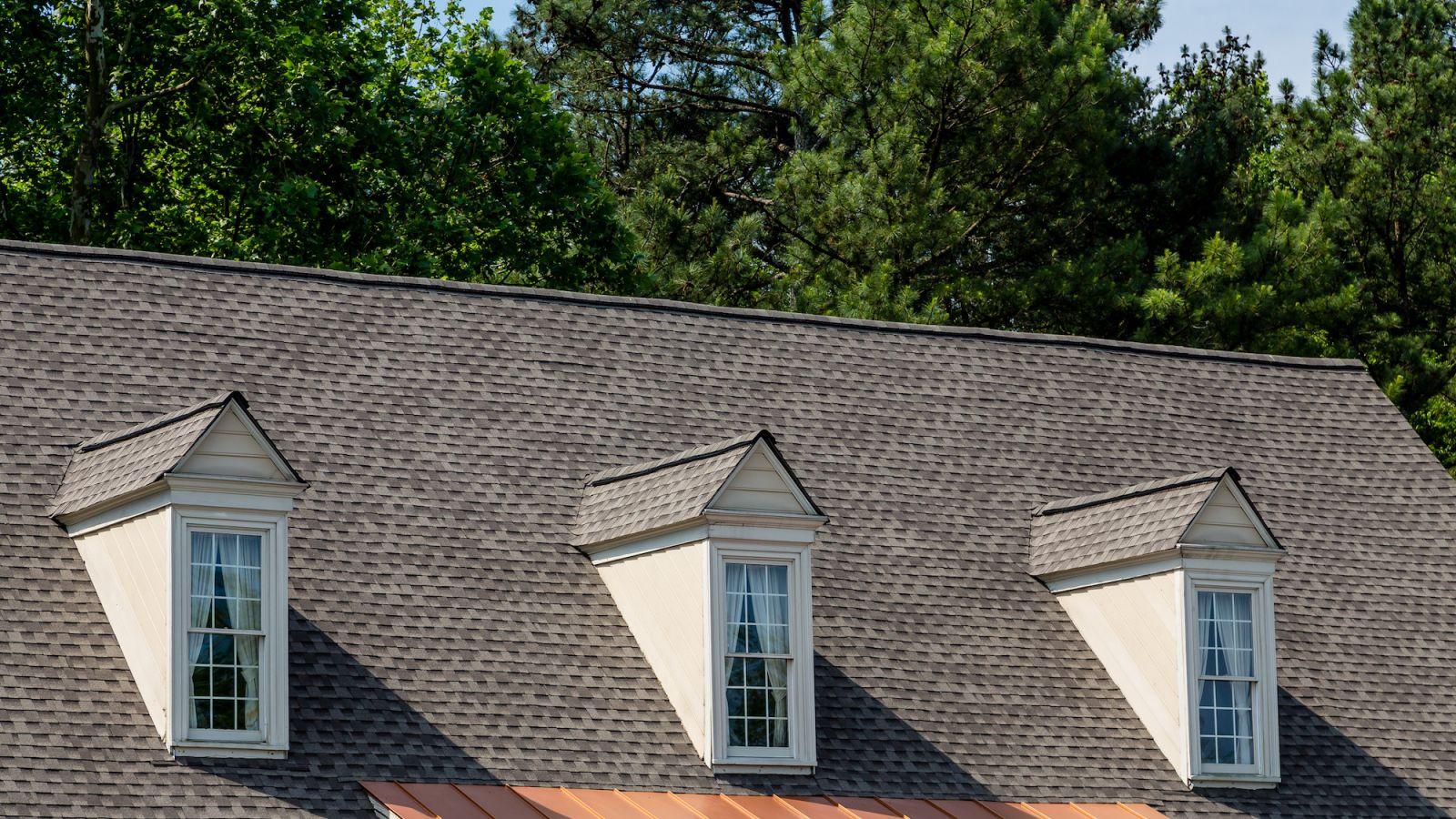 Roof Leak Repairs Dr Roof