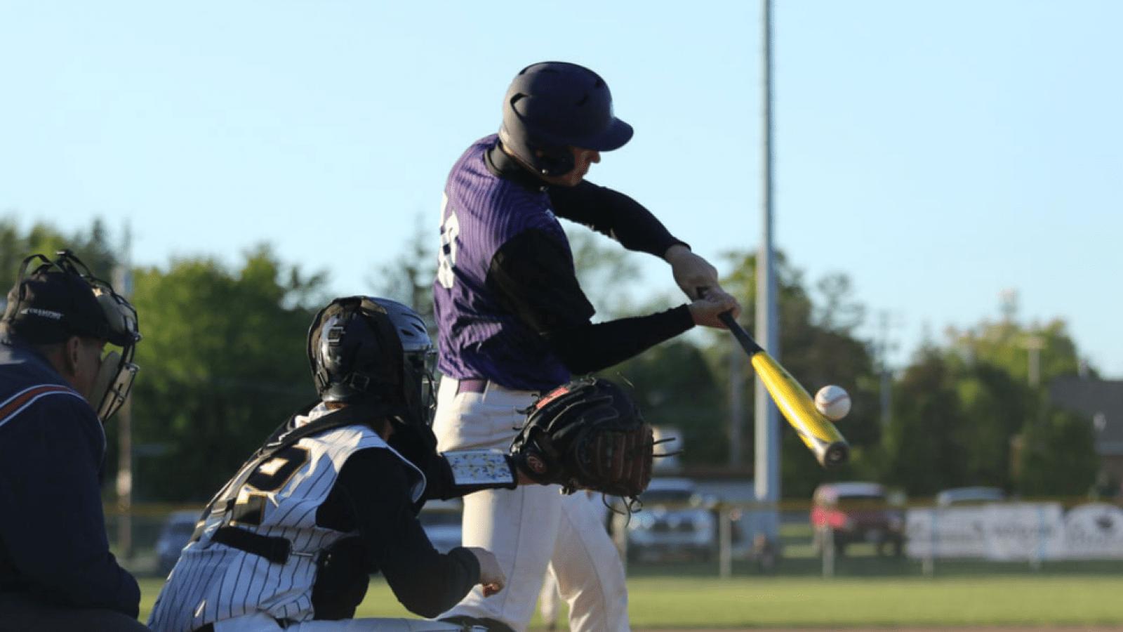 a baseball player holding a bat on a field