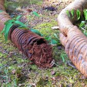 We Examine Your Drainage System and Your Property