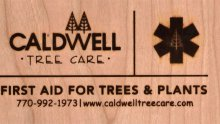 We are Caldwell Tree Care