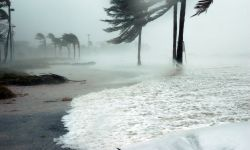 What You Need to Know about Disaster Recovery Plans- Updated