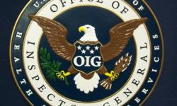 December was a relatively quiet month for the OIG Work Plan