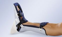 OIG to look at Questionable Billing for Off-the-Shelf Orthotic Devices