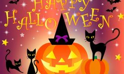 Candy Corn, Black Cats, Jack-o-Lanterns, Bobbing for Apples, and of course, Trick or Treat!