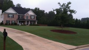 Mulch, Top Soil, & Ground Coverings Gallery