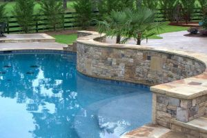 Gunite Pool with tanning shelf