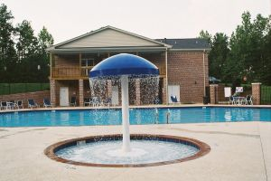 Gunite Pool with mushroom water feature