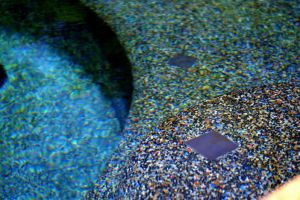 Underwater view of Pebble Gunite Pool