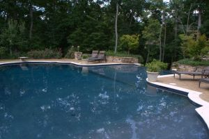 Vanishing Edge Gunite Pool