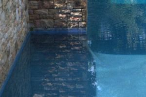 Gunite Pool with stone wall features