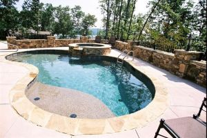 Gunite Pool w/tanning ledge