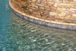 Gunite Pool with Custom Tile and Stone Work