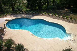Freeform Pool with Diving Board & Walkin Step