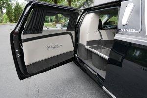 Platinum Phoenix-C