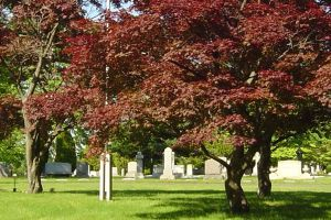 Cemeteries in New Jersey