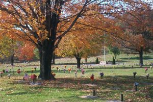 Alleghany Memorial Park