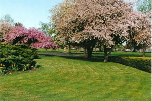 Clover Leaf Park Cemetery