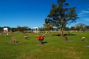 Wayne Memorial Park