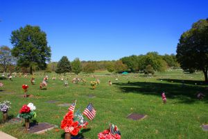 Forest Hill & Calvary Cemetery
