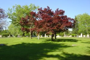Arlington Park Cemetery Pennsauken