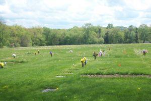 Mount Airy Memorial Cemetery