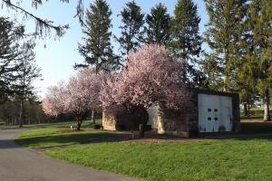 Twin Hills Memorial Park