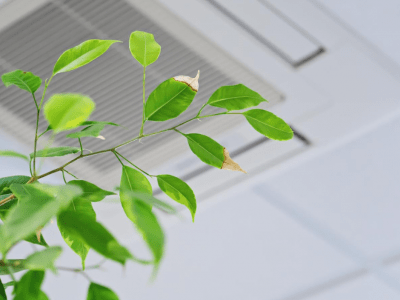 How HVAC Systems Can Make Indoor Air Safer