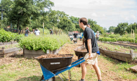 Recap: Westside Volunteer Corps August Day of Service