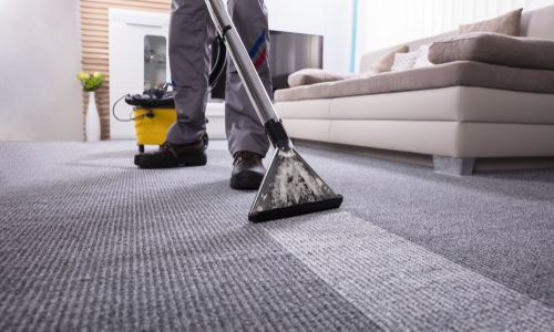 Image result for Zerorez Austin Carpet Cleaning