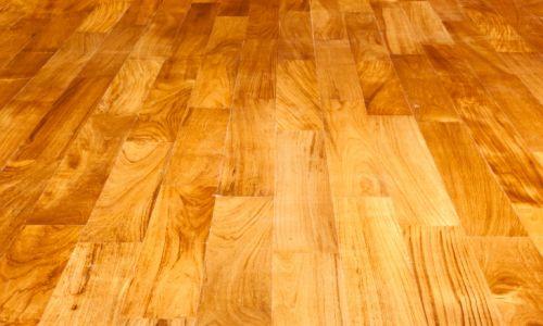 American Carpet Cleaners Minneapolis Carpet Vidalondon