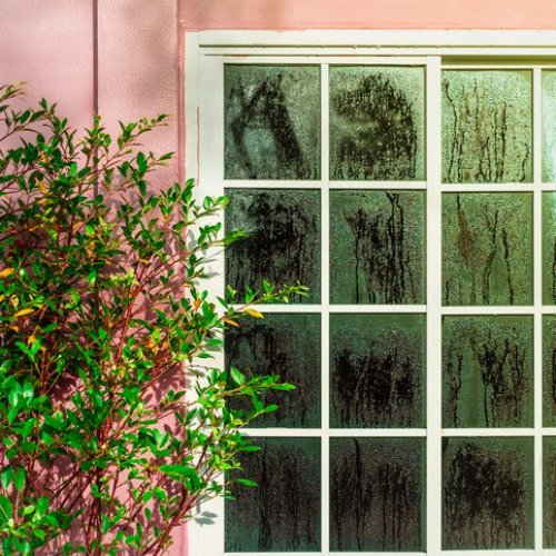 10 Simple Tips to Remove Excess Humidity From My Home  image