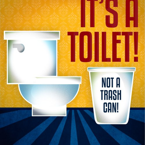 10 Items to Never Flush Down the Toilet- image