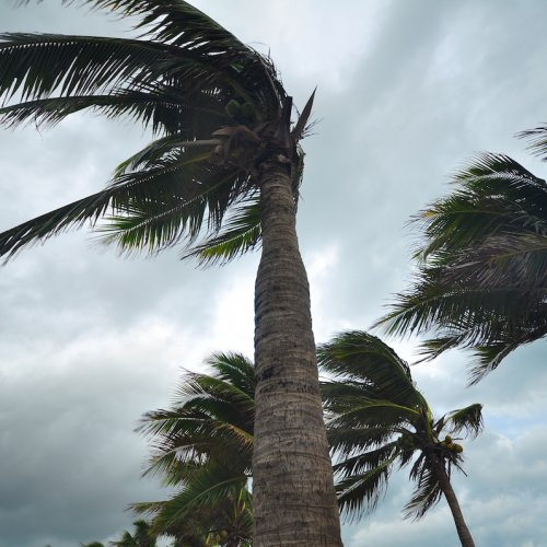 Hurricane Matthew image