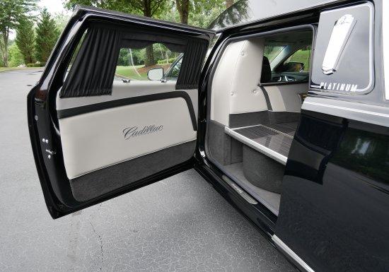 Platinum Phoenix C