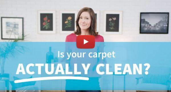Experience Clean Zerorez Raleigh