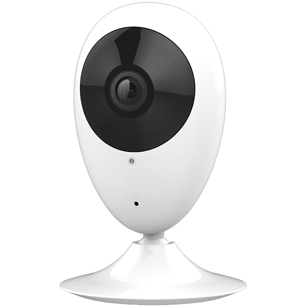 Indoor Video Cameras