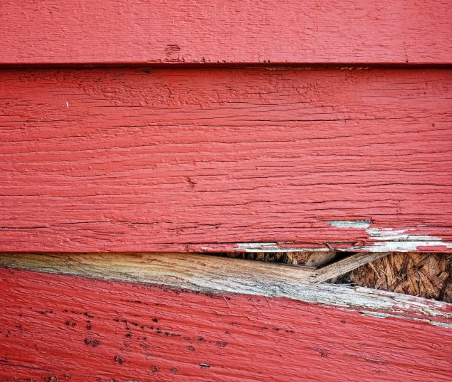 Areas of siding that are rotting or falling apart? image
